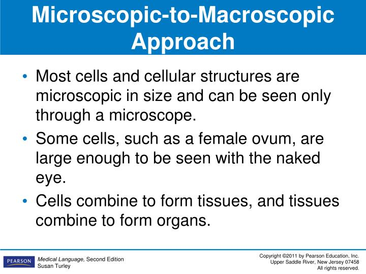 Microscopic-to-Macroscopic Approach