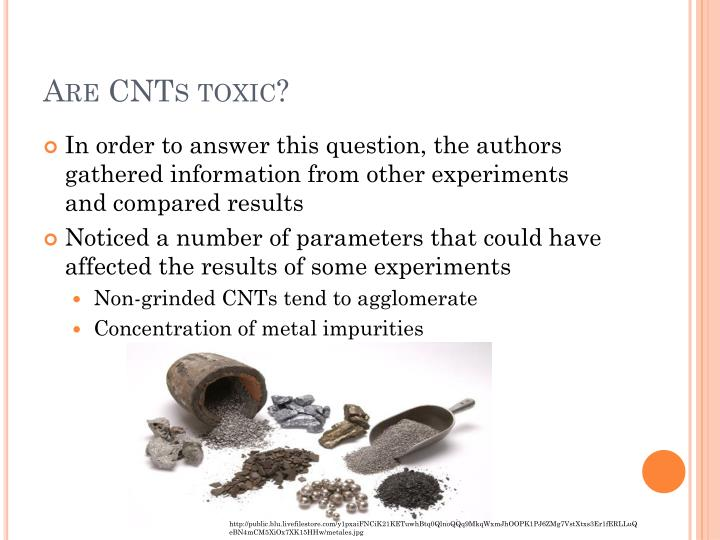 Are CNTs toxic?