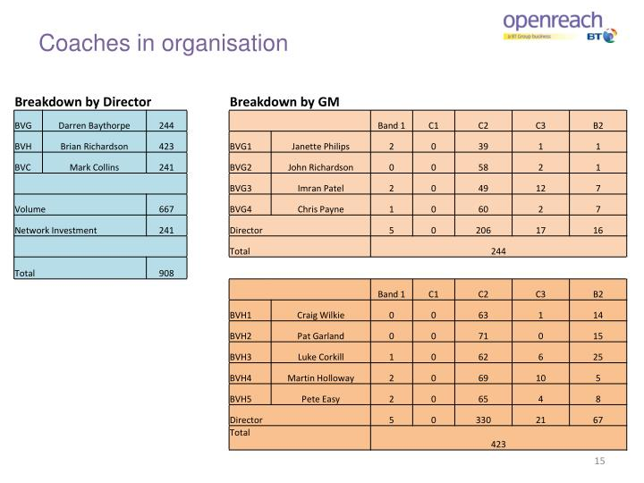 Coaches in organisation