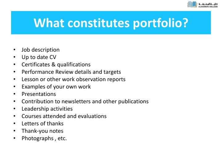 What constitutes portfolio?