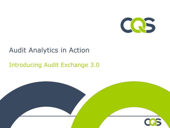 Audit Analytics in Action