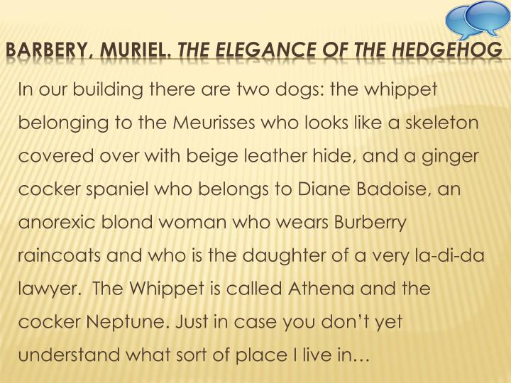 In our building there are two dogs: the whippet belonging to the