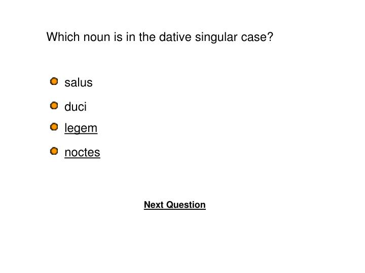 Which noun is in the dative singular case?