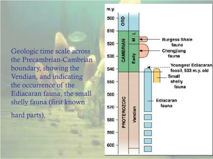 Geologic time scale across the Precambrian-Cambrian boundary, showing the Vendian, and indicating the occurrence of the Ediacaran fauna, the small shelly fauna (first known hard parts),