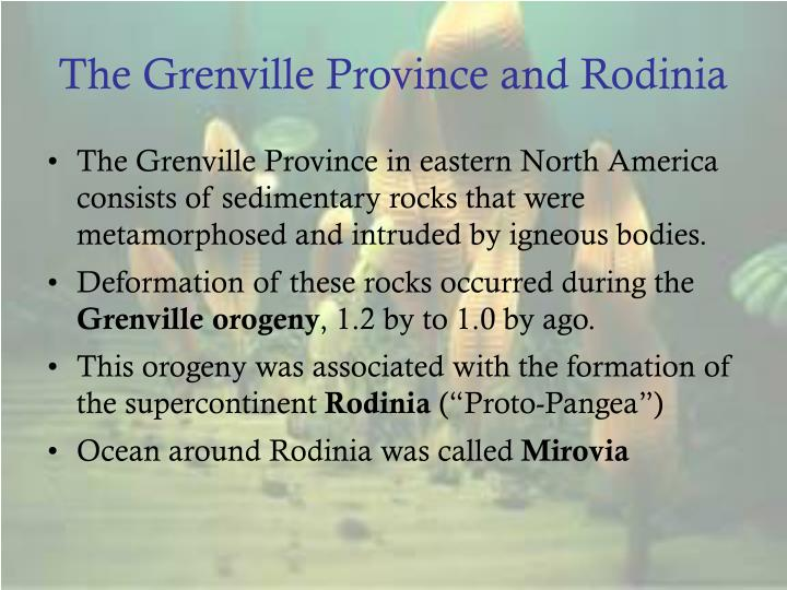 The Grenville Province and Rodinia