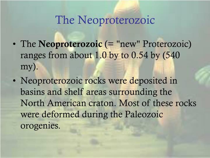 The Neoproterozoic