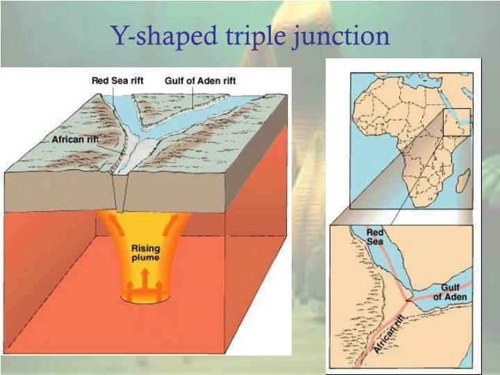 Y-shaped triple junction