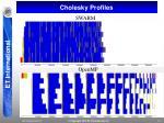 cholesky profiles