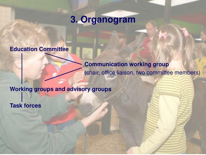 3. Organogram