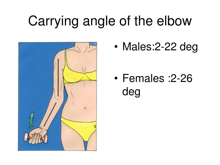 Carrying angle of the elbow
