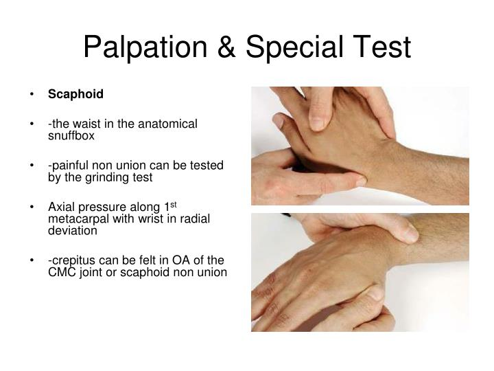 Palpation & Special Test
