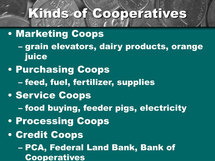 Kinds of Cooperatives
