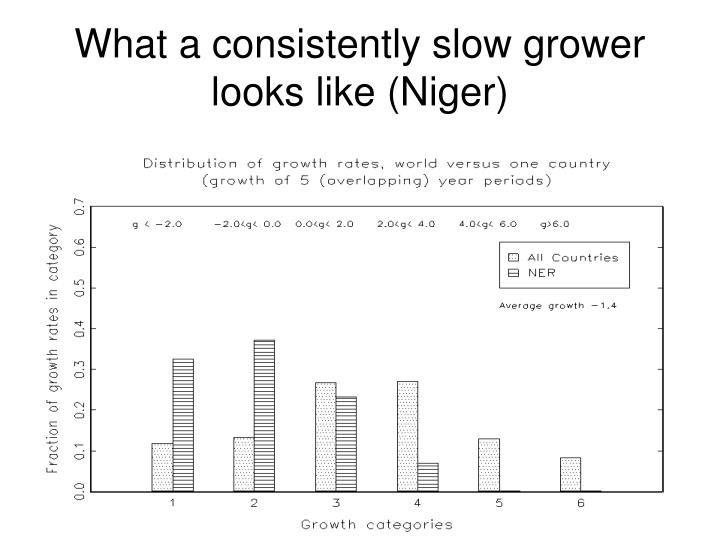 What a consistently slow grower looks like (Niger)