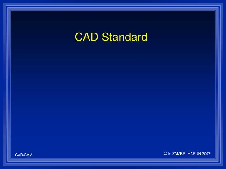 CAD Standard
