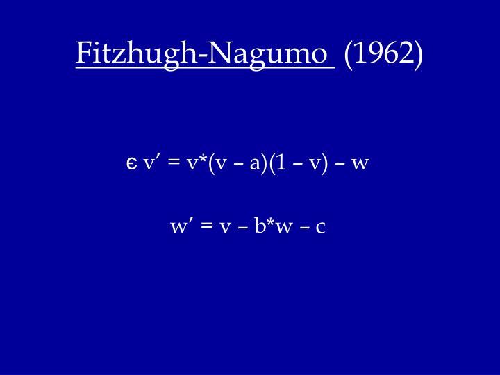 Fitzhugh-Nagumo