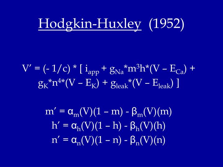 Hodgkin-Huxley