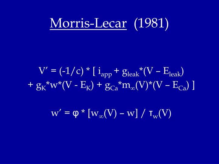 Morris-Lecar