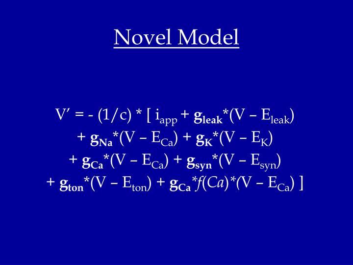 Novel Model