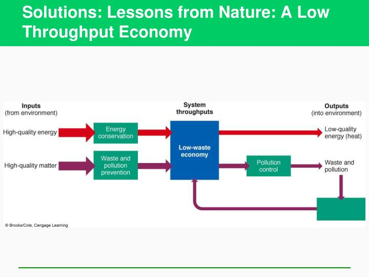 Solutions: Lessons from Nature: A Low Throughput Economy