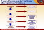 nunanut tamalaanut tunngatillugu attaveqaatinik inerisaaneq2