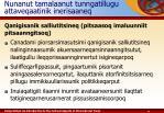 nunanut tamalaanut tunngatillugu attaveqaatinik inerisaaneq4
