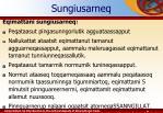 sungiusarneq2