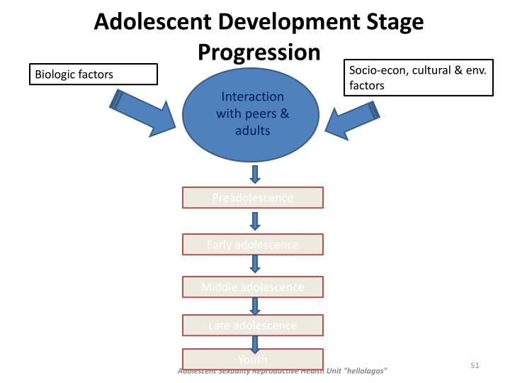 Adolescent Development Stage Progression
