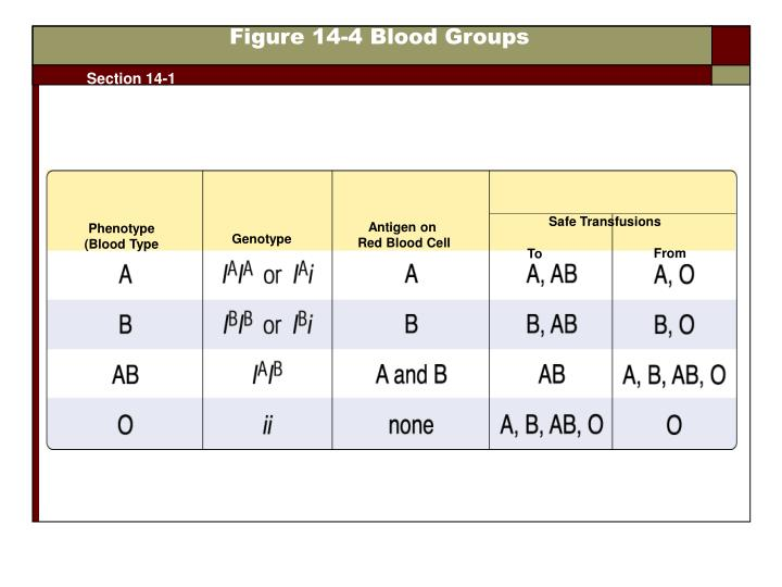 Figure 14-4 Blood Groups
