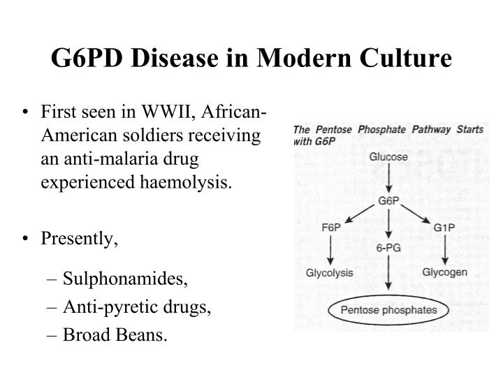 G6PD Disease in Modern Culture