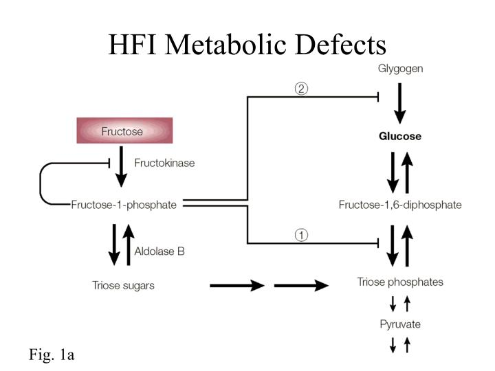 HFI Metabolic Defects