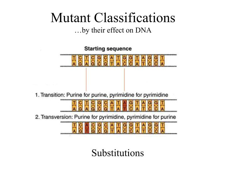 Mutant Classifications