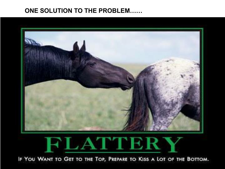 ONE SOLUTION TO THE PROBLEM……