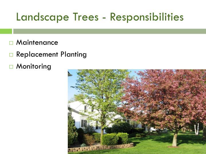 Landscape Trees - Responsibilities