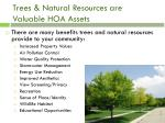 trees natural resources are valuable hoa assets
