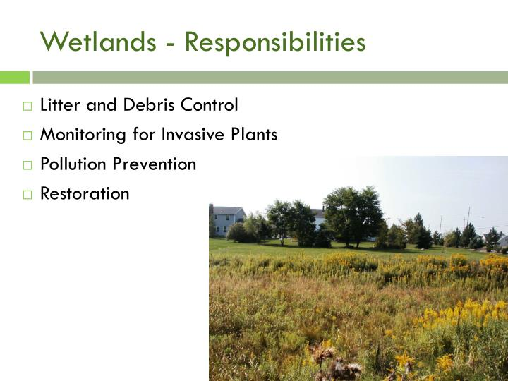 Wetlands - Responsibilities