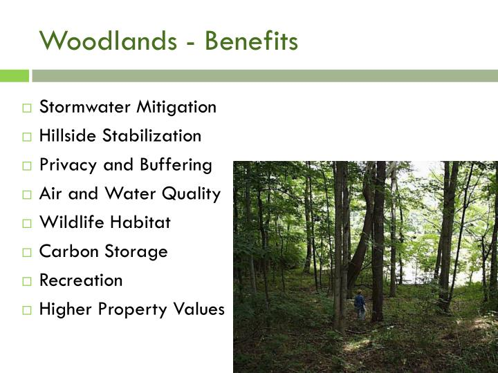 Woodlands - Benefits