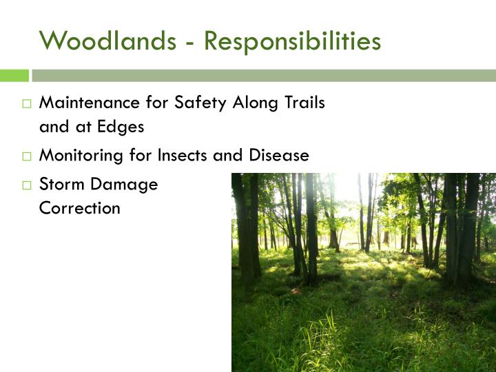 Woodlands - Responsibilities