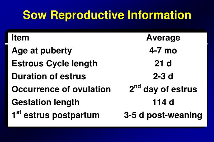 Sow Reproductive Information