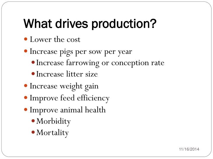 What drives production?