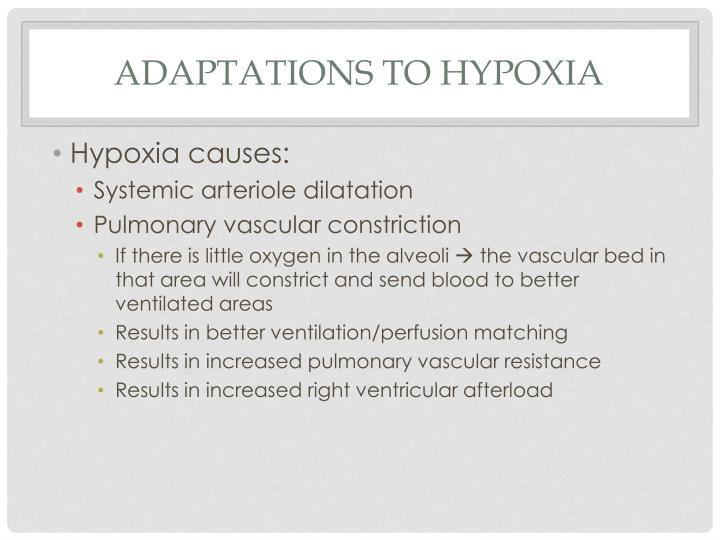 Adaptations to hypoxia