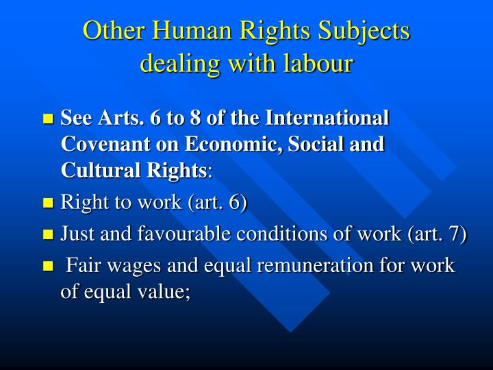 Other Human Rights Subjects