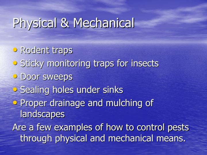 Physical & Mechanical