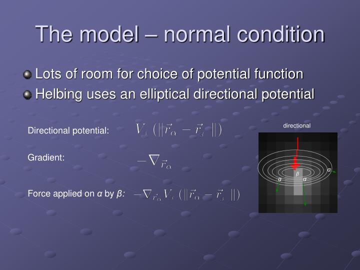 The model – normal condition