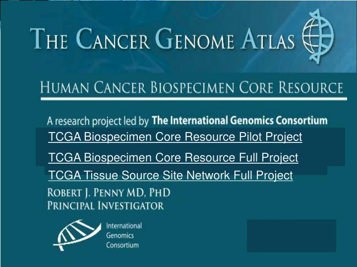 TCGA Biospecimen Core Resource Pilot Project