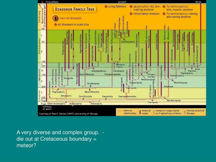 A very diverse and complex group.  - die out at Cretaceous boundary = meteor?