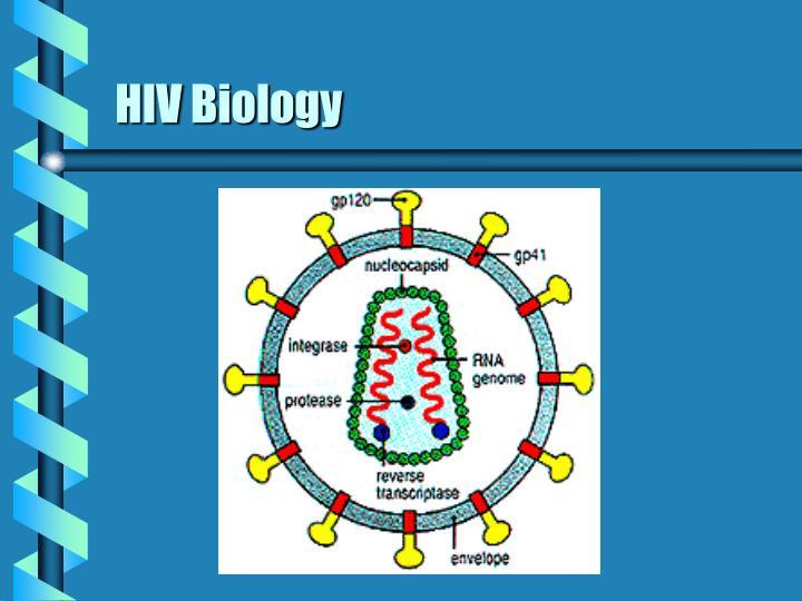 HIV Biology