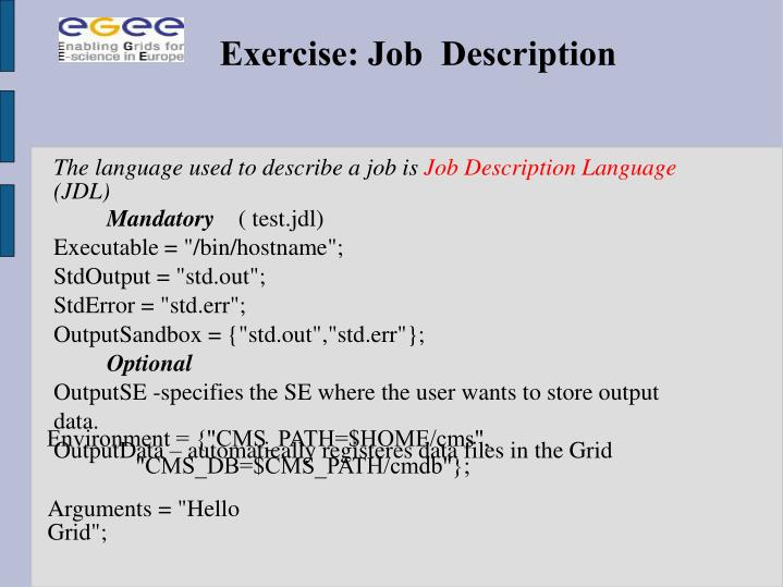 Exercise: Job  Description