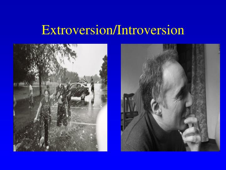 Extroversion/Introversion