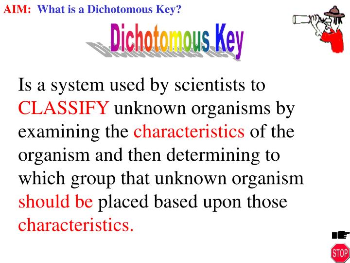 PPT - VOCABULARY: Classification Dichotomous Key ...