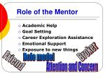 role of the mentor